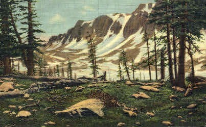 Lookout Range - Medicine Bow National Forest, Wyoming WY Postcard