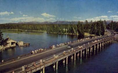 Fishing Bridge - Yellowstone National Park, Wyoming WY Postcard