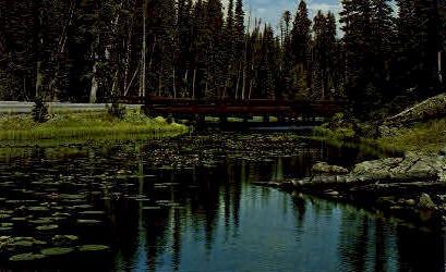 Isa Lake - Yellowstone National Park, Wyoming WY Postcard