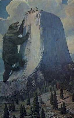 Bear - Devil's Tower National Monument, Wyoming WY Postcard