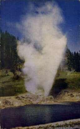Riverside Geyser - Yellowstone National Park, Wyoming WY Postcard