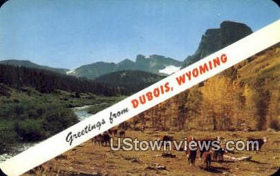 Dubois, WY, Wyoming, Postcard
