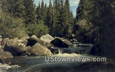 Tensleep Creek - Big Horn Mountains, Wyoming WY Postcard