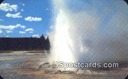 Daisy Geyser - Yellowstone National Park, Wyoming WY Postcard