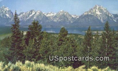Teton Range, Signal Mountain - Jackson Hole, Wyoming WY Postcard