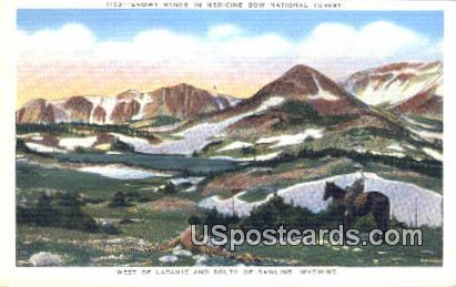 Medicine Bow National Forest - Laramie, Wyoming WY Postcard