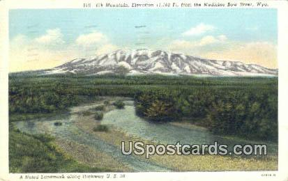 Elk Mountain - Medicine Bow National Forest, Wyoming WY Postcard