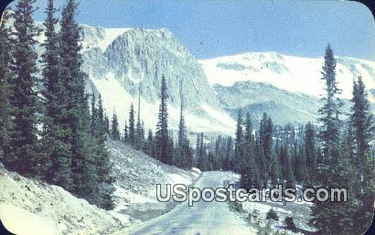 Highway No 130 - Medicine Bow National Forest, Wyoming WY Postcard