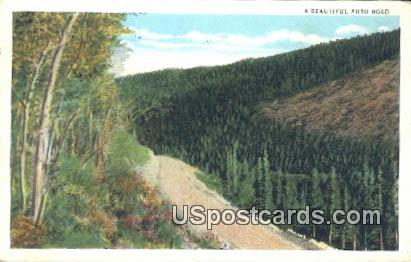 Auto Road - Medicine Bow National Forest, Wyoming WY Postcard