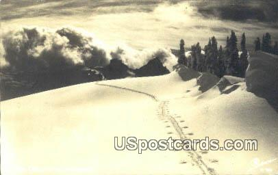 Real Photo Ski Trail - Misc, Wyoming WY Postcard