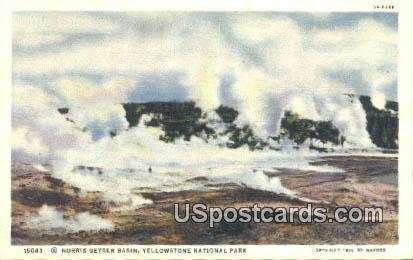 Norris Geyser Basin - Yellowstone National Park, Wyoming WY Postcard