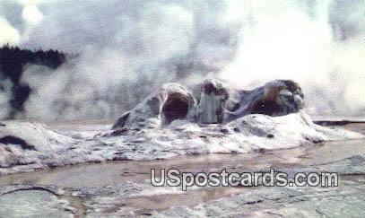 Grotto Geyser Cone - Yellowstone Park, Wyoming WY Postcard