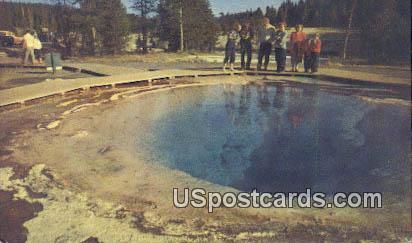 Morning Glory Pool - Yellowstone National Park, Wyoming WY Postcard