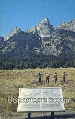 Glacier Gulch - Grand Teton National Park, Wyoming WY Postcard