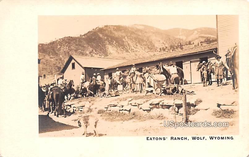 Eatons' Ranch - Wolf, Wyoming WY Postcard