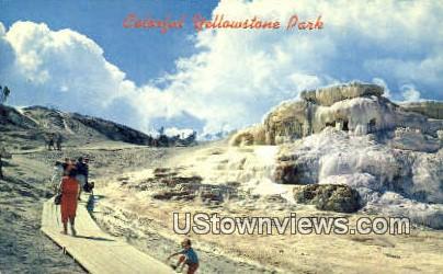 Yellowstone National Park, Wyoming, WY Postcard