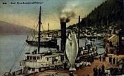 It's a Ketchikan Halibut! - Alaska AK Postcard