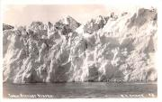Glacier - Taku Glacier, Alaska AK Postcard