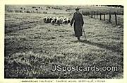 Shepherding the Flock - Berryville, Virginia VA Postcard