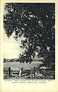 Trappist Monks - Berryville, Virginia VA Postcard