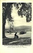 Blue Ridge Mountains - Berryville, Virginia VA Postcard