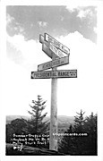 Summer Traffic Cop - Molly Stark Trail, Vermont VT Postcard