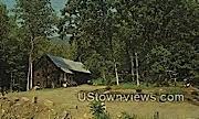 Old Jelly Mill - Brattleboro, Vermont VT Postcard