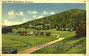 Ames Hill - Brattleboro, Vermont VT Postcard