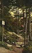 Long Trail Lodge - Rutland, Vermont VT Postcard