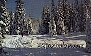 Mount Spokane, WA Postcard      ;      Mount Spokane, Washington