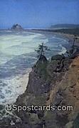 Pacific Ocean - La Push, Washington WA Postcard