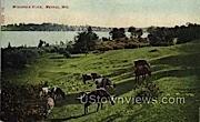 Wisconsin River - Merrill Postcard