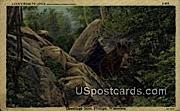 Bear - Phillips, Wisconsin WI Postcard