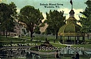 Bethesda Mineral Spring - Waukesha, Wisconsin WI Postcard