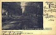 Lover's Lane - Appleton, Wisconsin WI Postcard