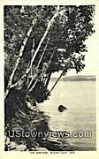The Birches - Sugar Loaf, Wisconsin WI Postcard