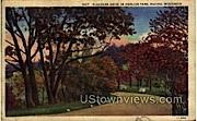 Pleasure Drive In Horlick Park - Racine, Wisconsin WI Postcard