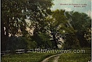 Stewart's Island - Wausau, Wisconsin WI Postcard