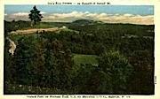 Lee's Tree Tavern  - Rainelle, West Virginia WV Postcard