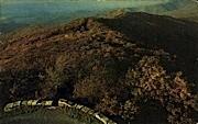 Reddish Knob  - George Washington National Forest, West Virginia WV Postcard