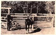 Blar Paw Ranch - Jackson Hole, Wyoming WY Postcard