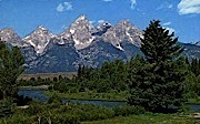 Grand Teton National Park - Jackson Hole, Wyoming WY Postcard