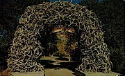 Elk Horn Arch - Jackson, Wyoming WY Postcard