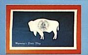 State Flag - Misc, Wyoming WY Postcard