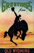Greetings From - Misc, Wyoming WY Postcard