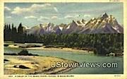 Snake River, WY, Wyoming, Postcard