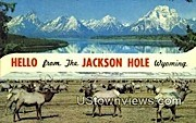 Jackson Hole, WY, Wyoming, Postcard