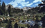 Pack Trip - Duboise, Wyoming WY Postcard