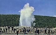Old Faithful Geyser - Yellowstone Park, Wyoming WY Postcard