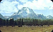 Mt Moran - Jackson Hole, Wyoming WY Postcard